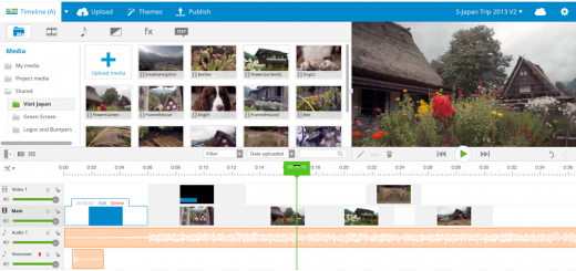 Download Piconion Photo Editor For Chrome & Chromebook