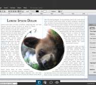 Lucidpress-newsletter-plugin