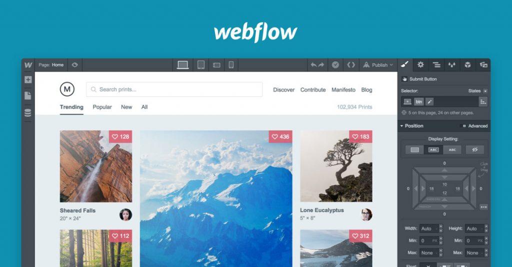 Webflow Online CMS For Chrome