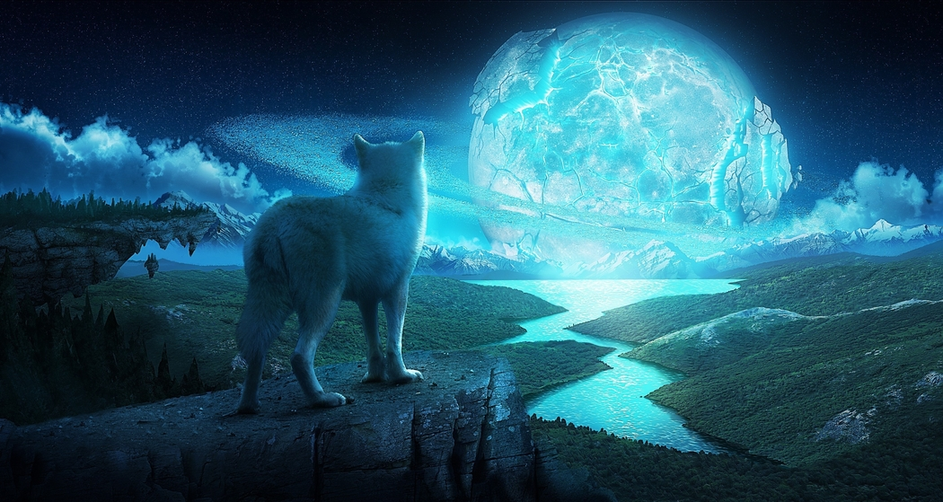 Wolf looking at ice planet