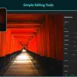 Simple editing tools on Lightroom
