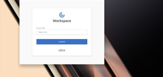 Citrix Workspace Screenshot